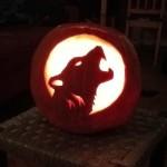 Halloween az Etológia tanszéken
