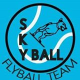 skyballfb