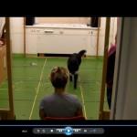 2. Kutyaetológia Konferencia