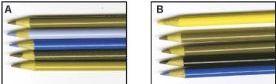 pencils_dog